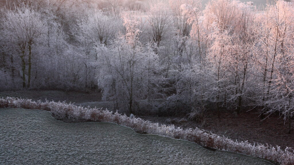 In de winter kan het bij zonsopkomst wondermooi zijn op de Kemmelberg.