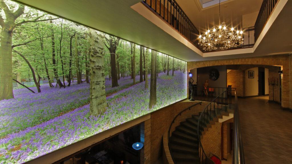 Deze indrukwekkende lichtwand met een zeer mooie foto van de boshyacinten is te zien in de lobby van Hostellerie Kemmelberg ****. Deze foto meet maar liefst 8 m bij 2,5 m: dus 20 m² kijkplezier.